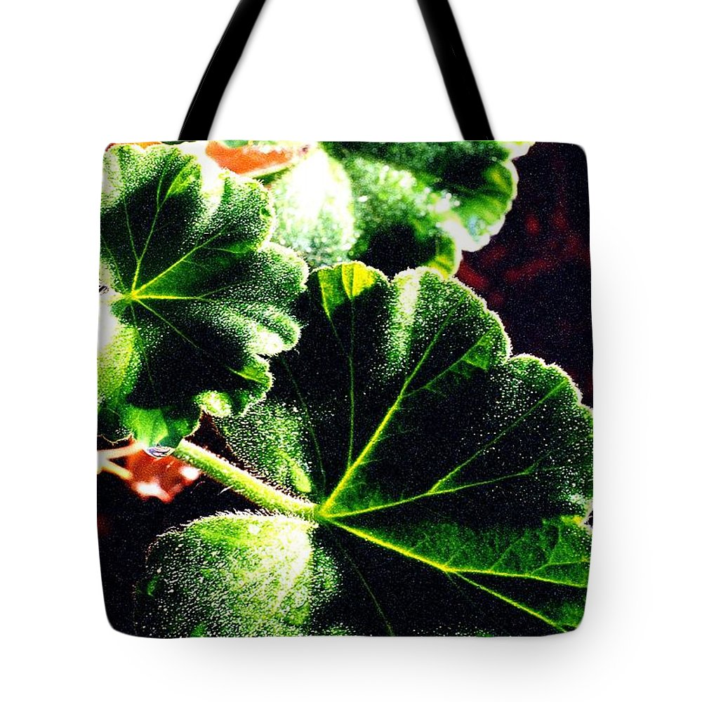 Geraniums Tote Bag featuring the photograph Geranium Leaves by Nancy Mueller