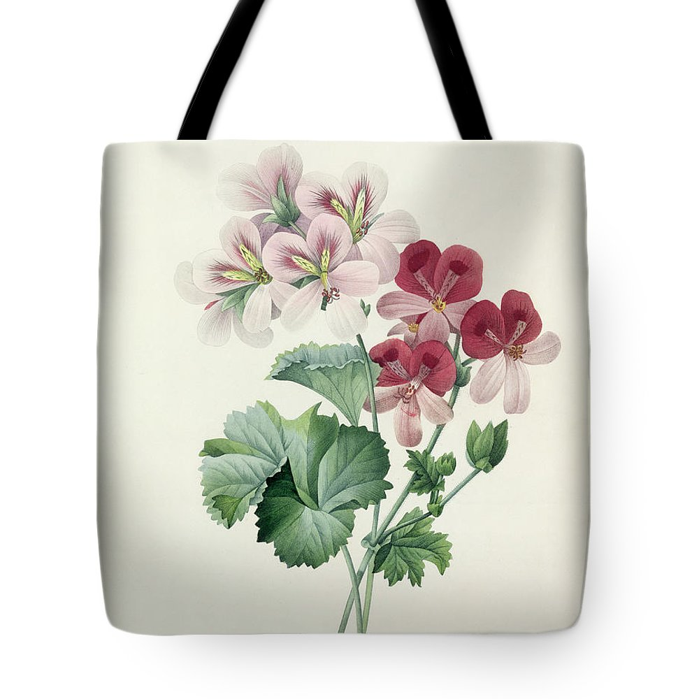 Geranium Tote Bag featuring the drawing Geranium Variety by Pierre Joseph Redoute