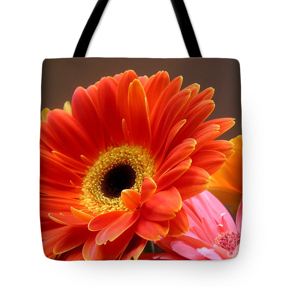 Nature Tote Bag featuring the photograph Gerbera Daisies - Luminous by Lucyna A M Green
