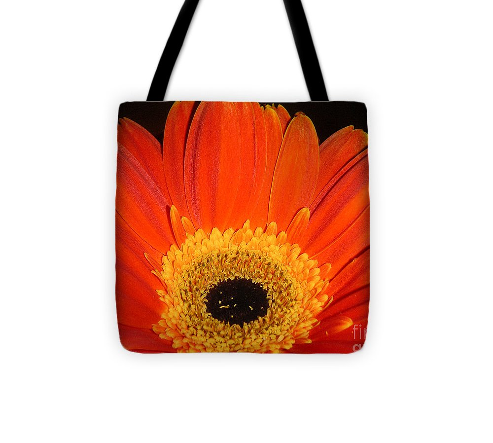 Nature Tote Bag featuring the photograph Gerbera Daisy - Glowing In The Dark by Lucyna A M Green