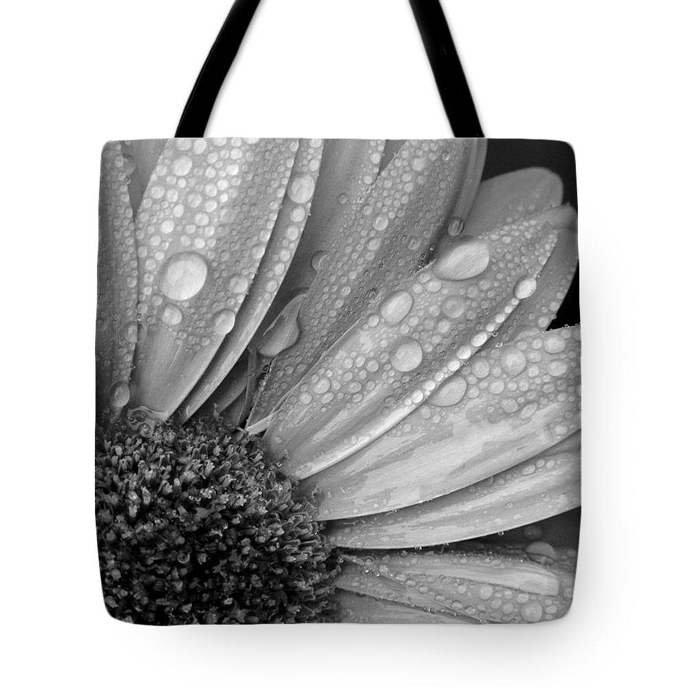 Gerbera Daisy Tote Bag featuring the photograph Gerbera Daisy After The Rain 2 by Natasha Sweetapple