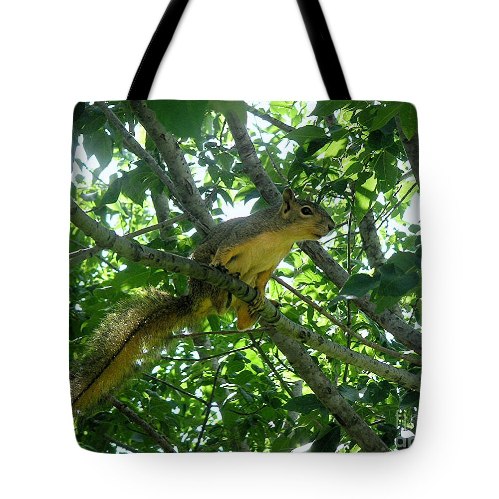 Nature Tote Bag featuring the photograph Getting A Grip by Lucyna A M Green