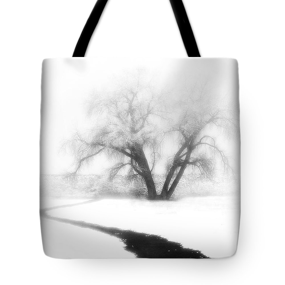 Tree Tote Bag featuring the photograph Getting There by Marilyn Hunt