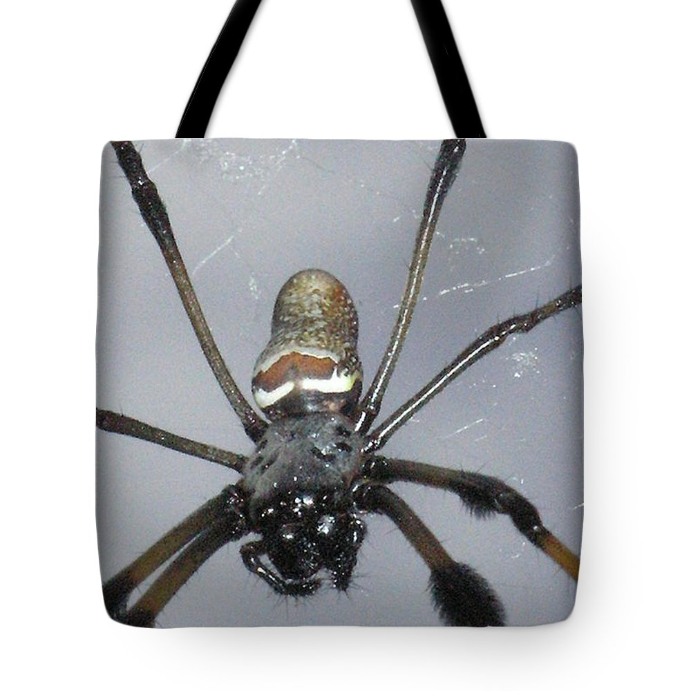 Nature Tote Bag featuring the photograph Getting To Know A Golden Orb Weaver by Kimberly Mohlenhoff