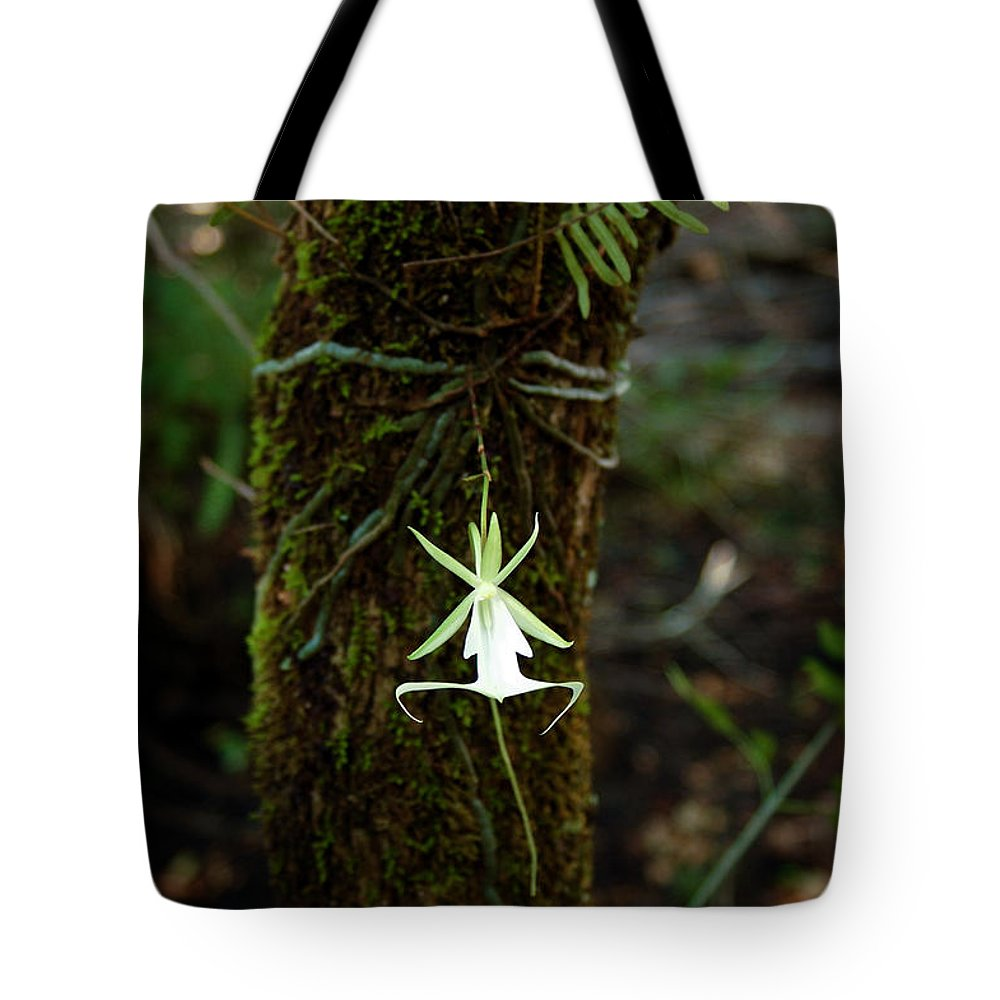 Ghost Tote Bag featuring the photograph Ghost Orchid Of The Fakahatchee Strand by Rich Leighton