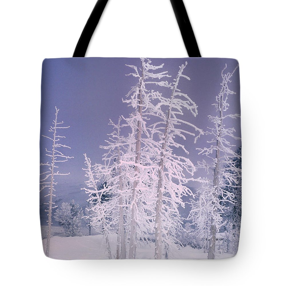 North America Tote Bag featuring the photograph Ghost Trees Yellowstone National Park by Dave Welling