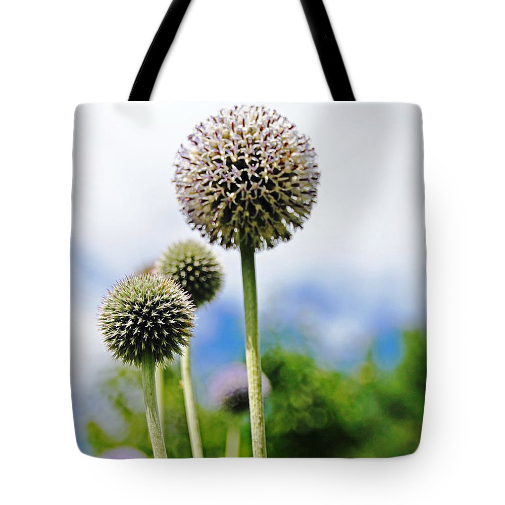 Giant Globe Thistle Tote Bag featuring the photograph Giant Globe Thistle by Debbie Oppermann