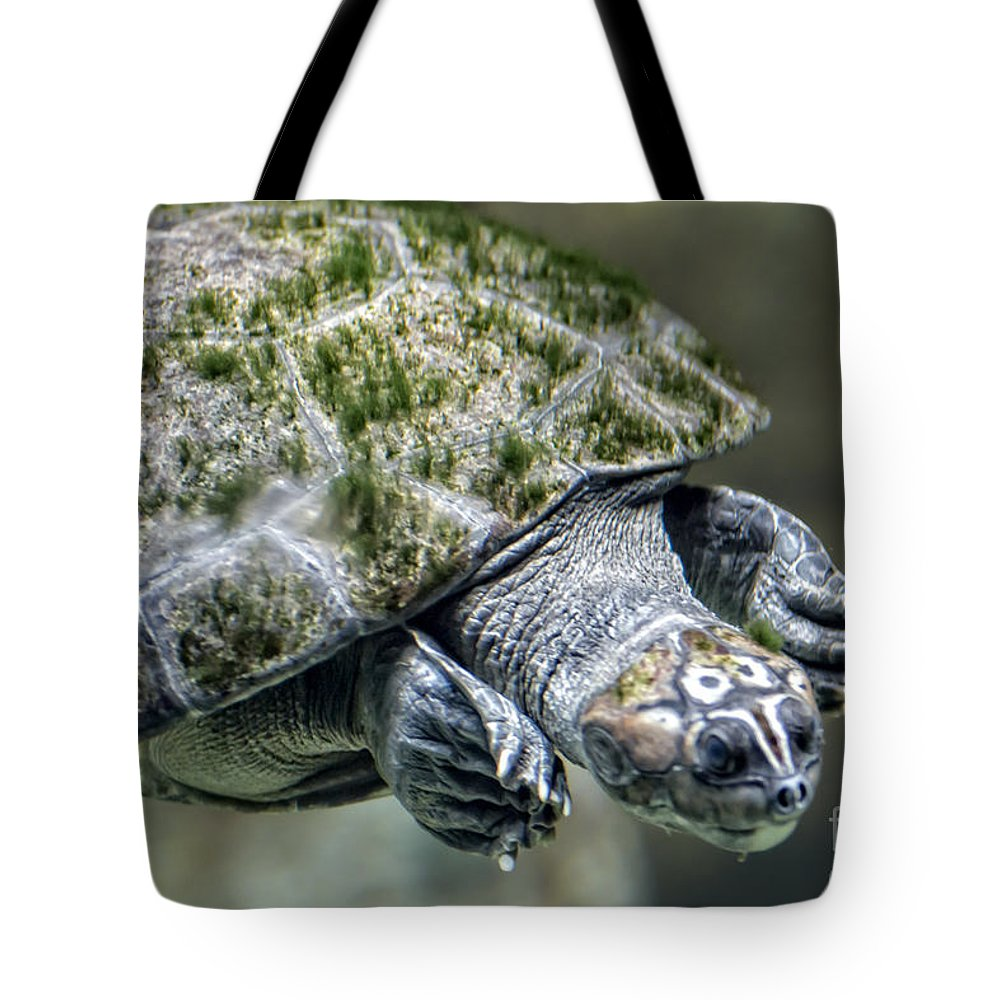 Turtle Tote Bag featuring the photograph Giant River Turtle by Michael Shake