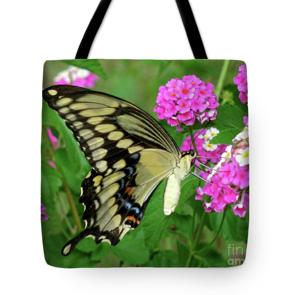 Insect Tote Bag featuring the photograph Giant Swallowtail Butterfly IIi by Donna Brown