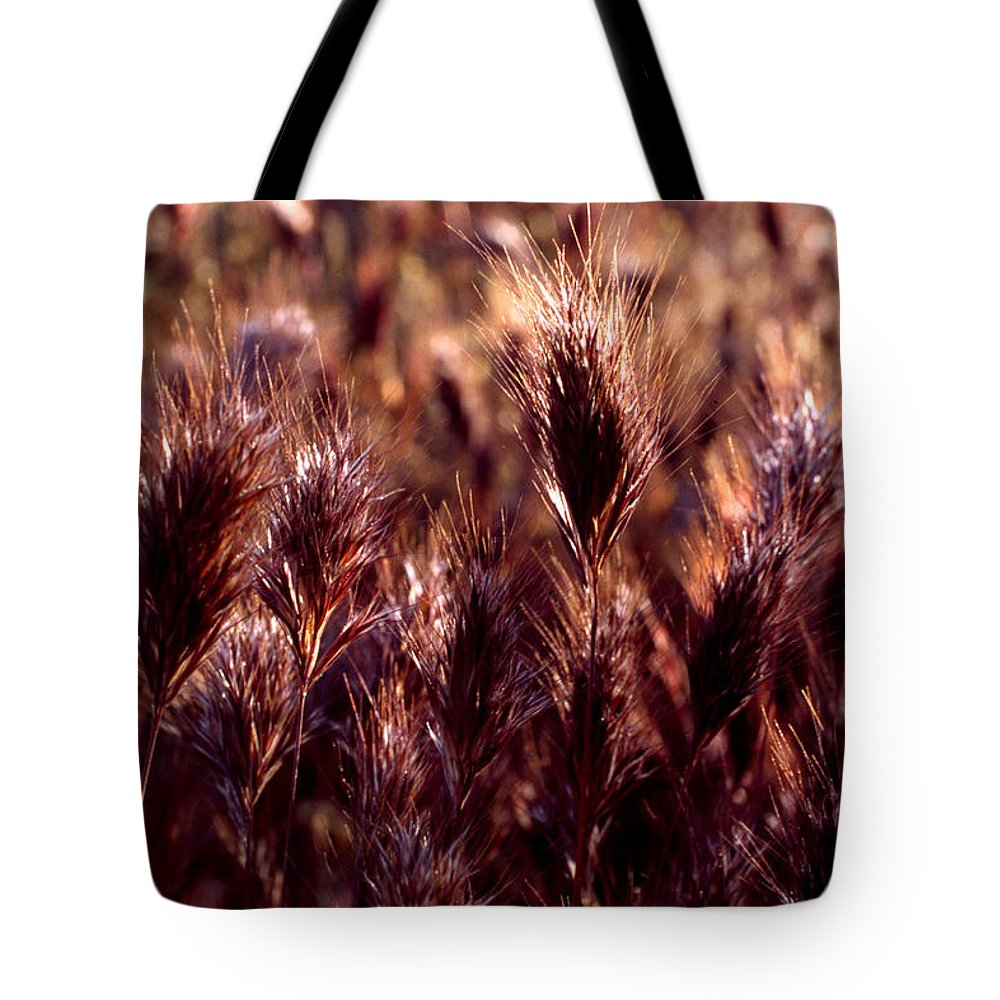 Nature Tote Bag featuring the photograph Gideon by Randy Oberg