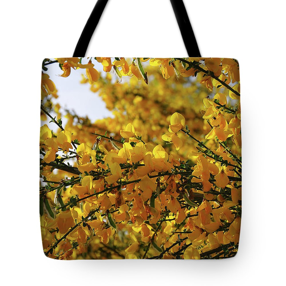 Ginestra Tote Bag featuring the photograph Ginestre by Ilaria Andreucci