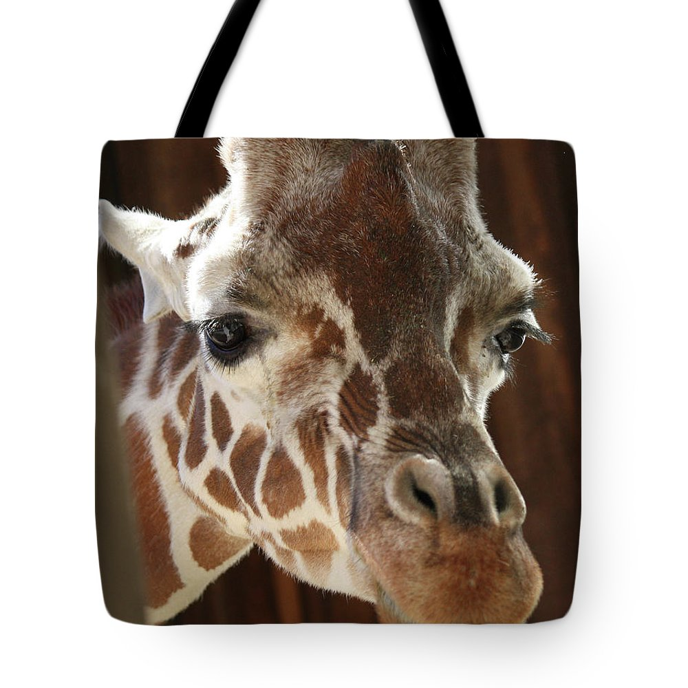 Maryland Tote Bag featuring the photograph Giraffe Taking A Peek by Ronald Reid