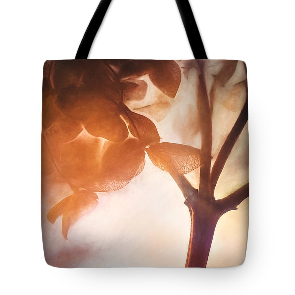 Scott Norris Photography Tote Bag featuring the photograph Give Thanks For The Light by Scott Norris