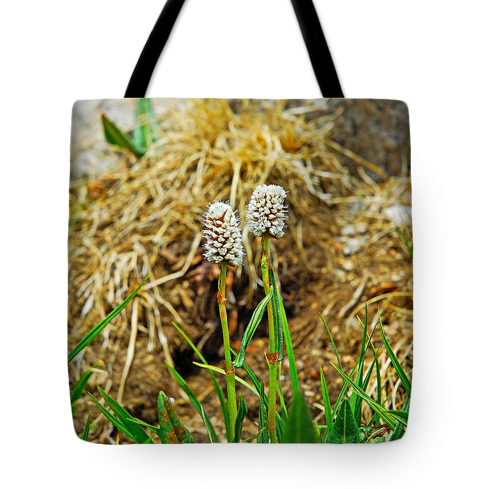 Glacial Tote Bag featuring the photograph Glacial Wildflowers by Robert Meyers-Lussier