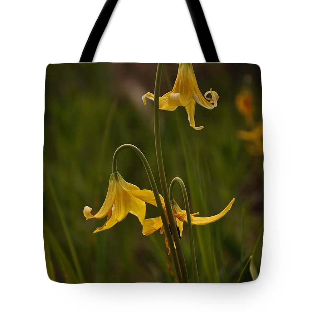 Yellowstone National Park Tote Bag featuring the photograph Glacier Lilly by Frank Madia
