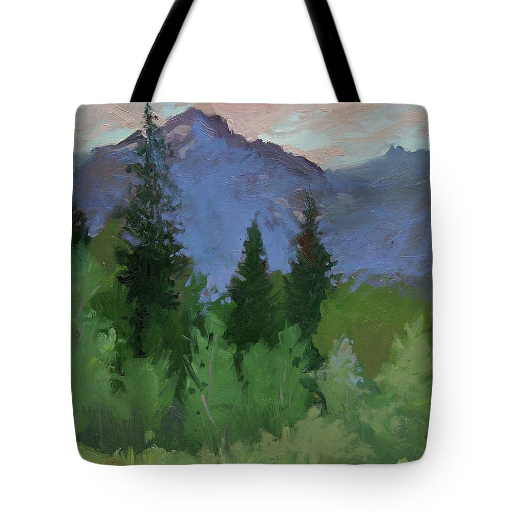 Plein Air Painting Tote Bag featuring the painting Glacier Nat'l Park - Plein Air - Rising Wolf Ranch by Betty Jean Billups