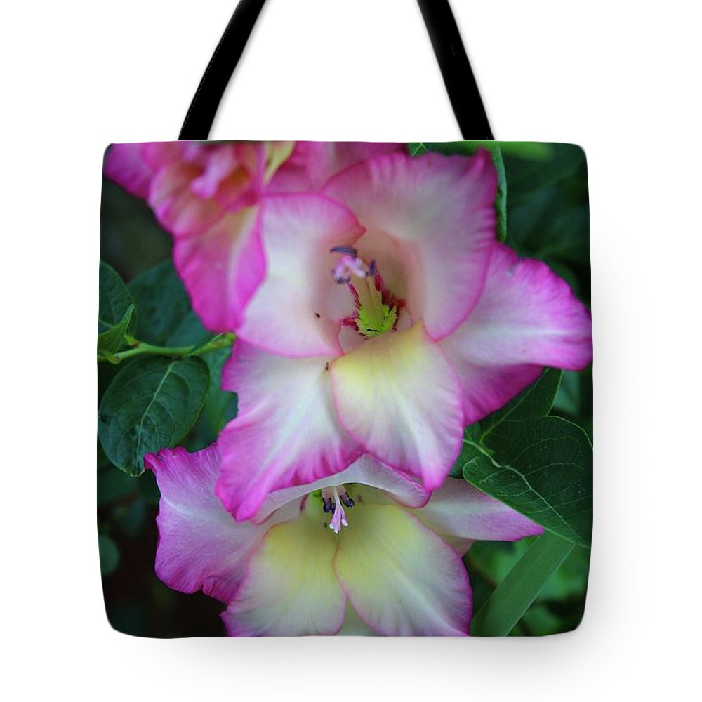 Photograph Tote Bag featuring the photograph Gladiolas Blooming With Ripening Blueberries by Mandy Elliott