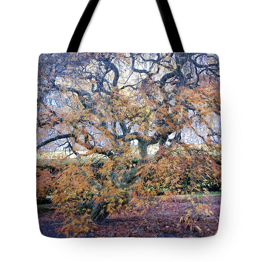 Photography Tote Bag featuring the photograph Glen Park Manor Garden by Steven Natanson