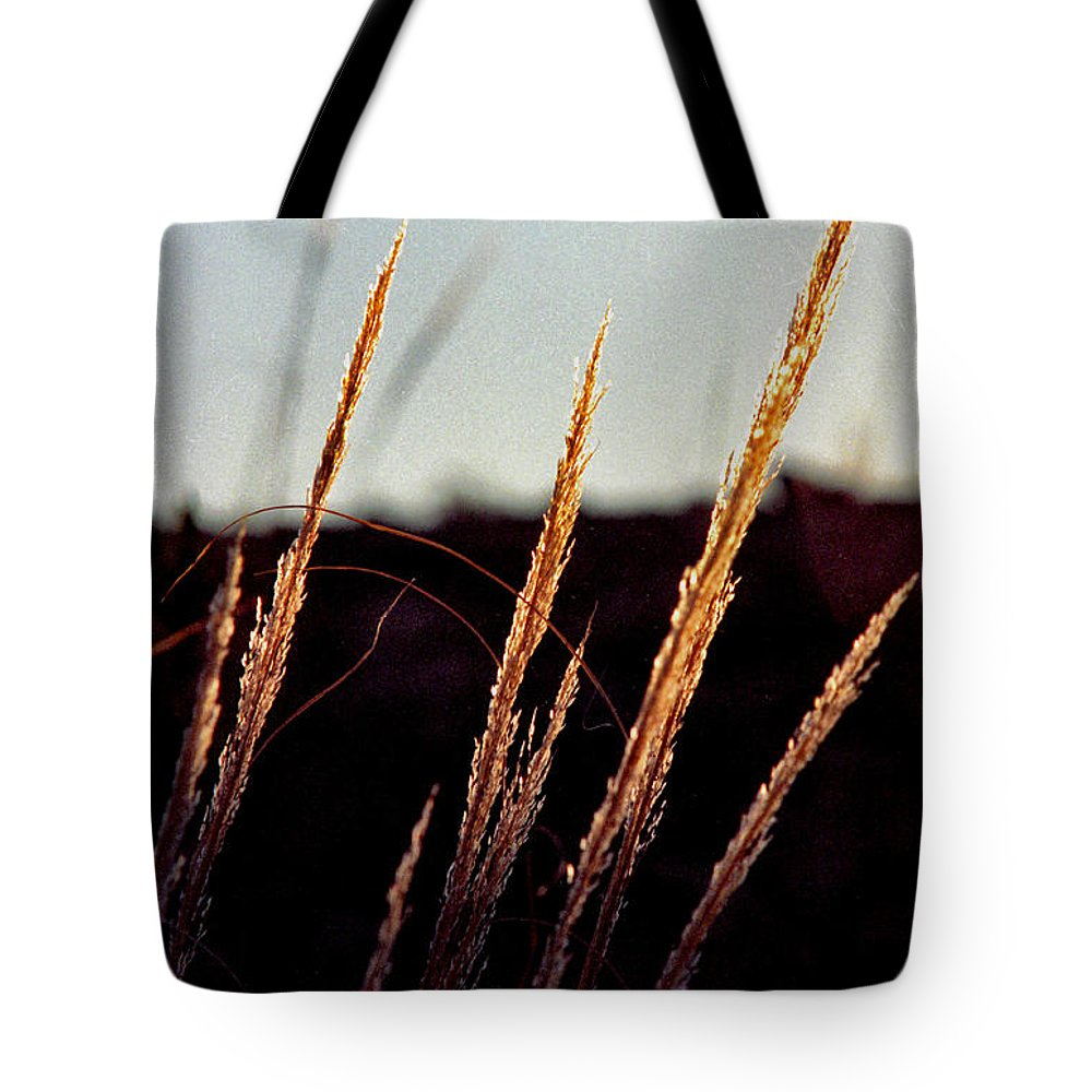 Grass Tote Bag featuring the photograph Glistening Grass by Randy Oberg
