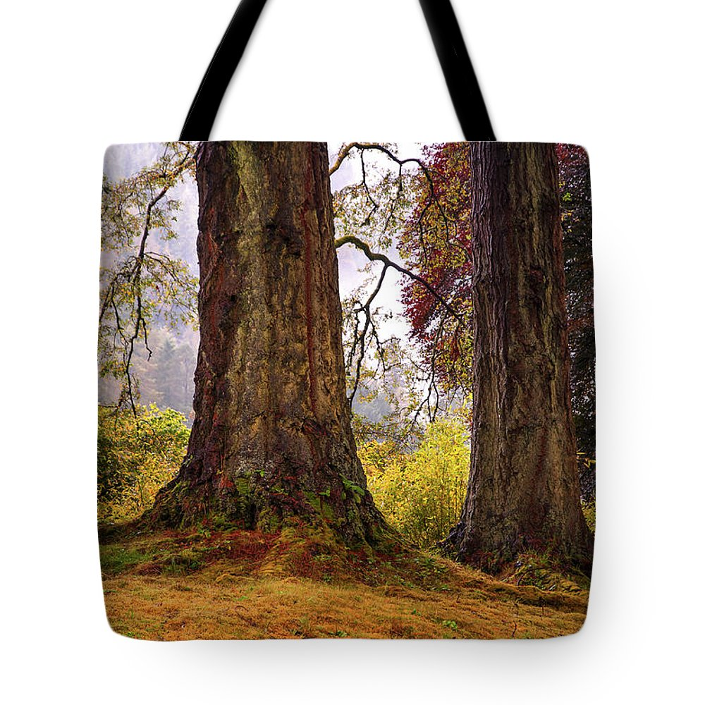 Landscape Tote Bag featuring the photograph Glorious Fall In Benmore Botanical Garden. Scotland by Jenny Rainbow