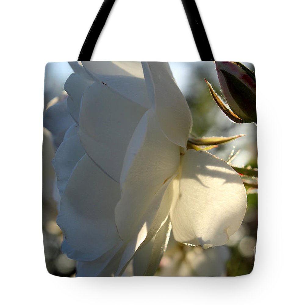 Rose Tote Bag featuring the photograph Glorious Mood by Krissy Katsimbras