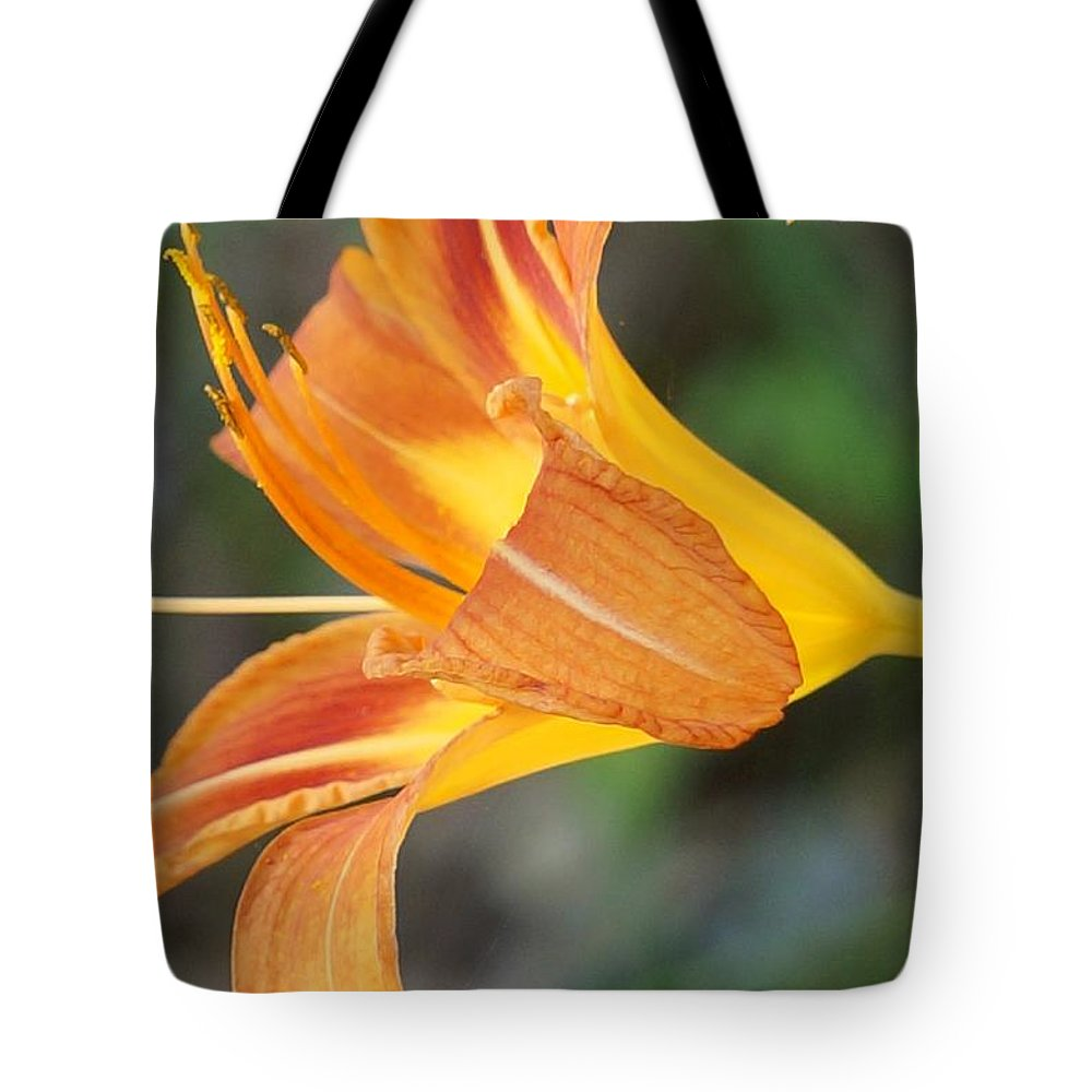 Lily Tote Bag featuring the photograph Glow Of A Lily by Maxine Billings