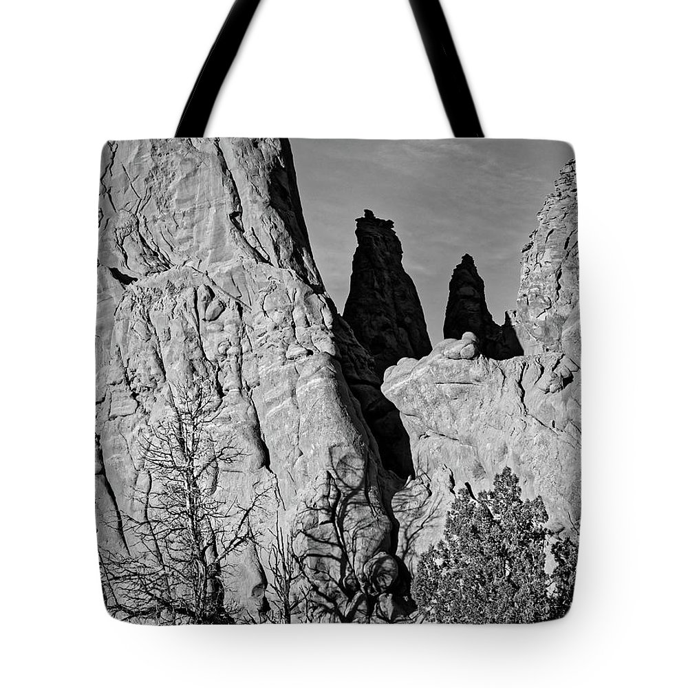 National Tote Bag featuring the photograph Gnarled Old Desert Trees Black And White Kodachrome Basin Utah by Scott Leslie