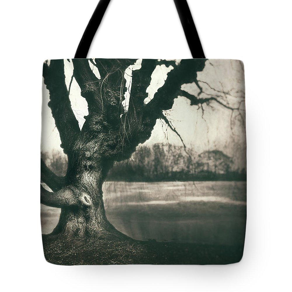 Gnarled Tote Bag featuring the photograph Gnarled Old Tree by Scott Norris