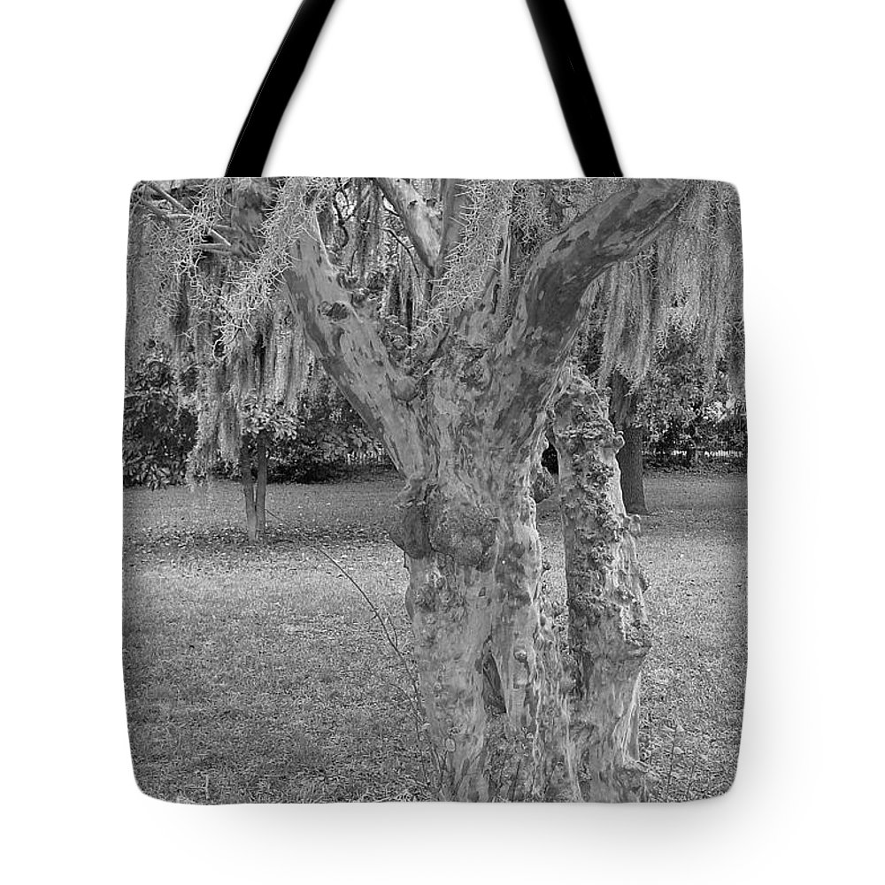 Gnarly Tote Bag featuring the photograph Gnarly - Black And White by Suzanne Gaff