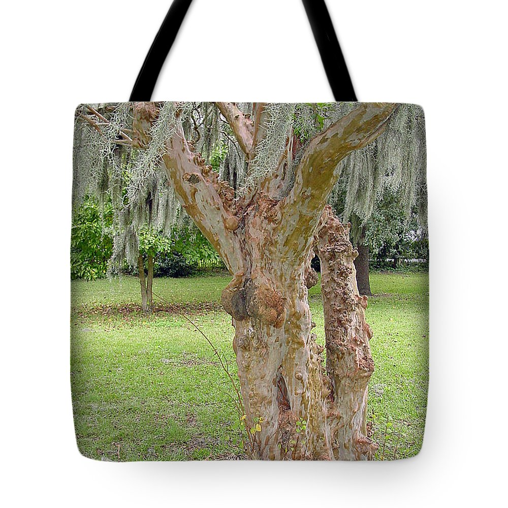 Gnarly Tote Bag featuring the photograph Gnarly by Suzanne Gaff