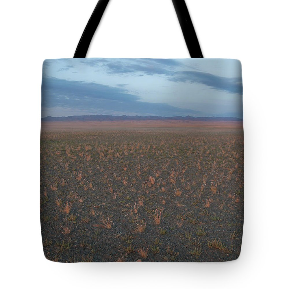 Mongolia Tote Bag featuring the photograph Gobi Desert by Alan Toepfer