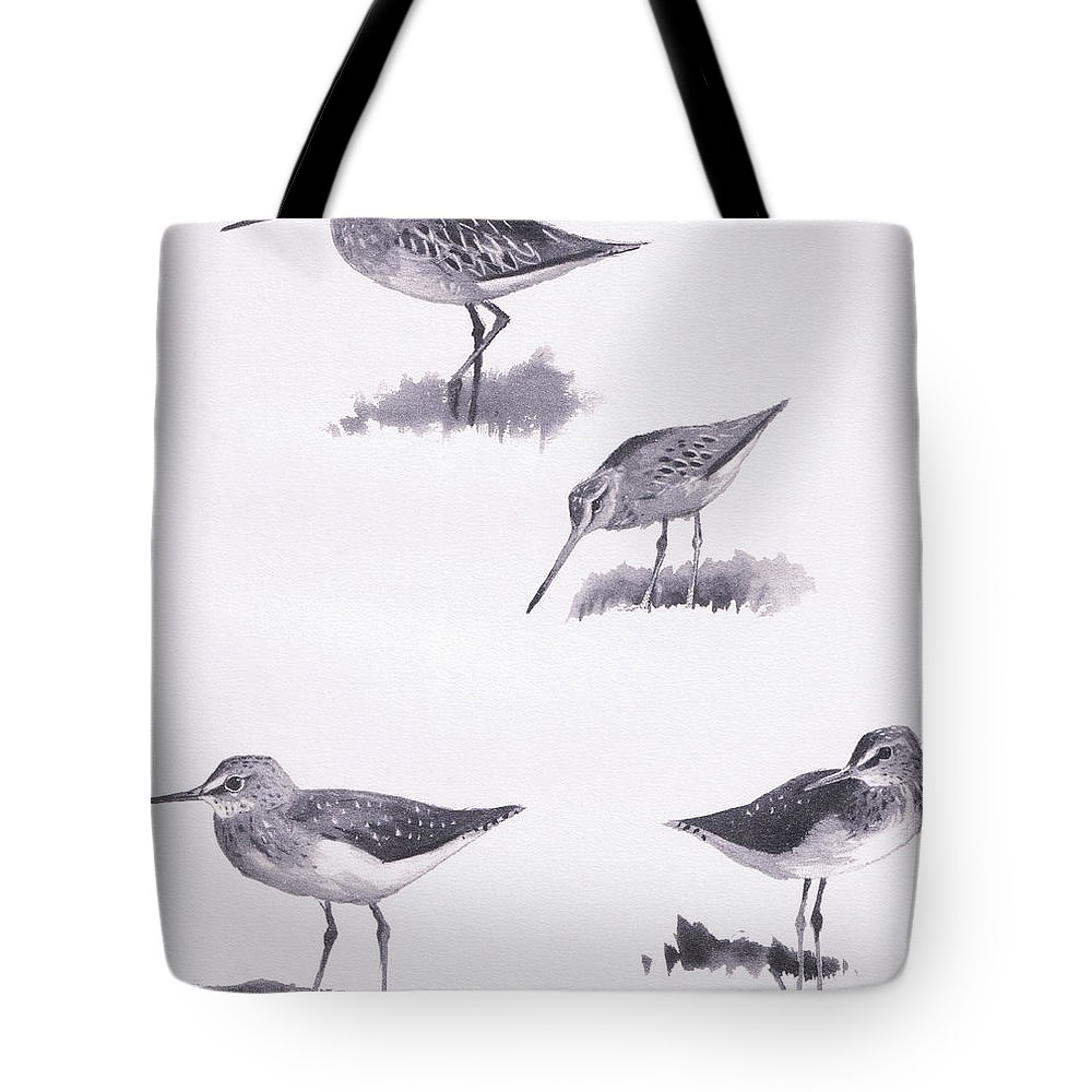 Studies Tote Bag featuring the drawing Godwits And Green Sandpipers by Archibald Thorburn