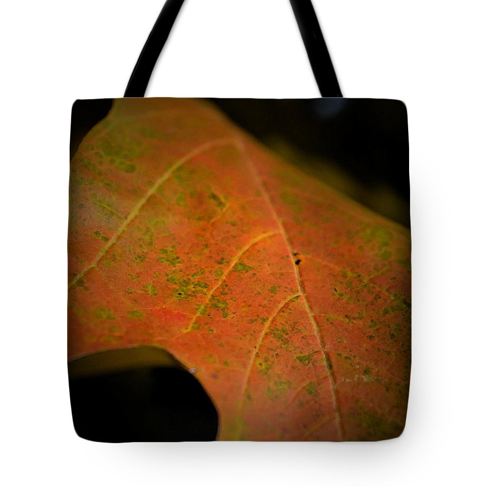 Maple Leaf Tote Bag featuring the photograph Going For Gold by Richard Andrews