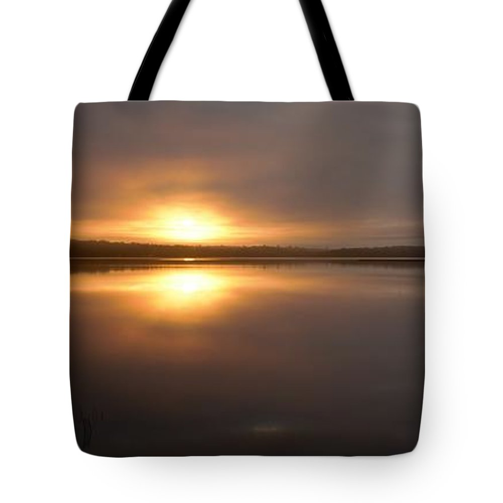 Tote Bag featuring the photograph Gold And Grey by Paul Barnes