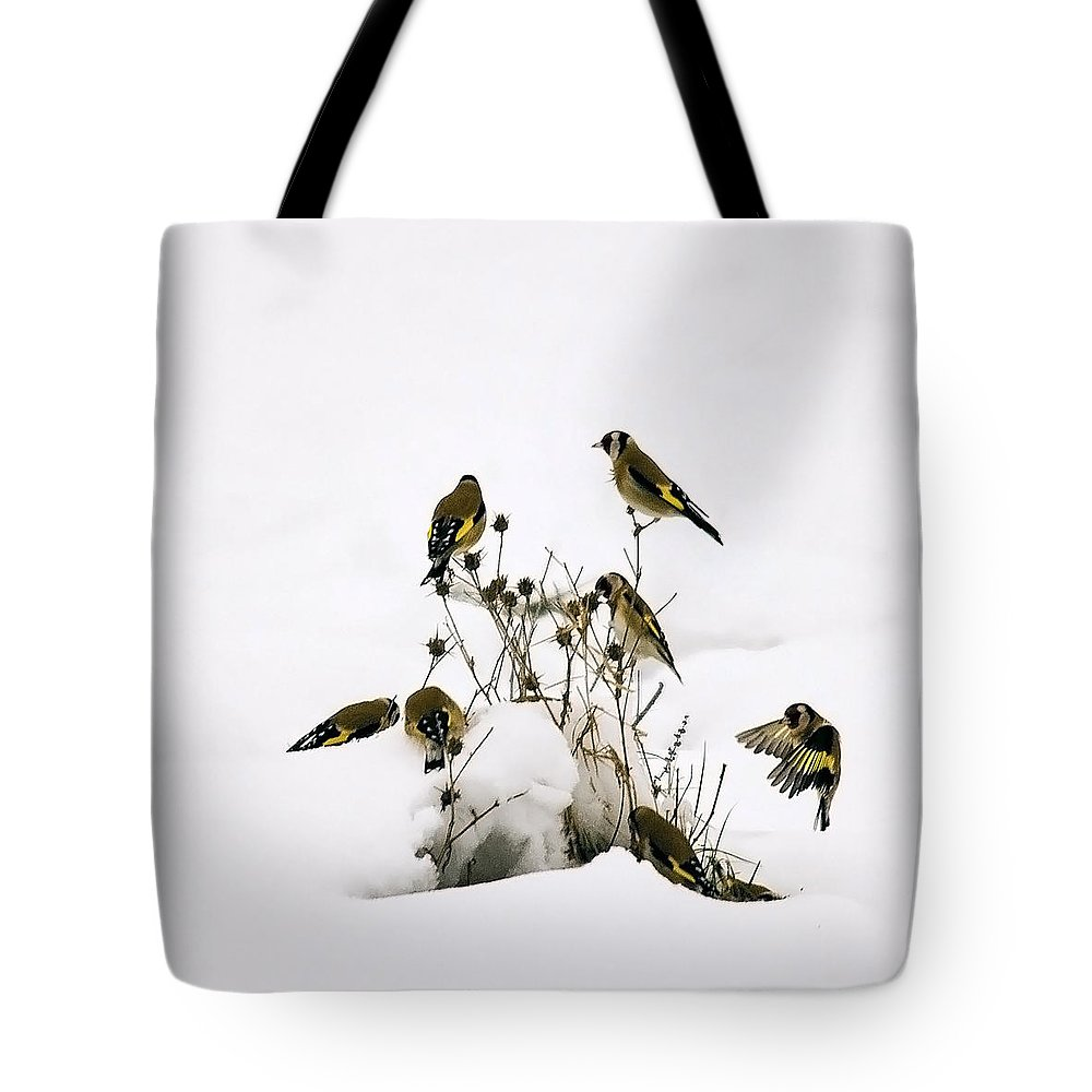 Goldfinches Tote Bag featuring the photograph Gold Finches In Snow by Cliff Norton