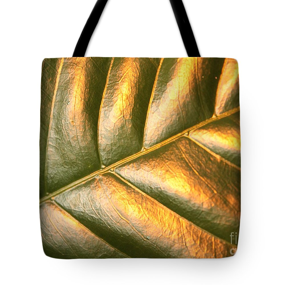 Gold Leaf Tote Bag featuring the photograph Gold Leaf Canvas by Carol Groenen