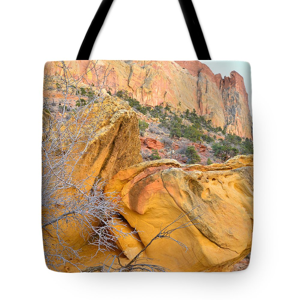 Grand Staircase Escalante National Monument Tote Bag featuring the photograph Gold Nugget by Ray Mathis