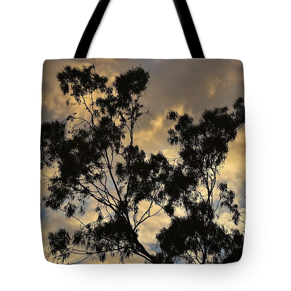 Linda Brody Tote Bag featuring the photograph Gold Sunset Tree Silhouette I by Linda Brody