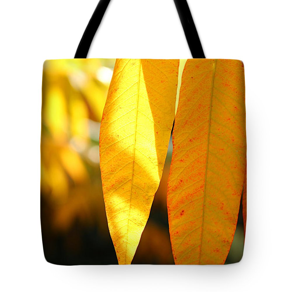 Maple Leave Tote Bag featuring the photograph Golden Accent by Loretta S
