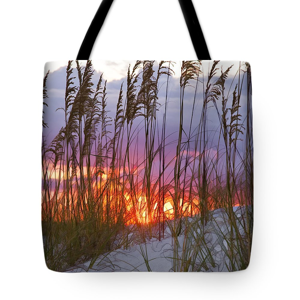 Sea Oats Tote Bag featuring the photograph Golden Amber by Janet Fikar
