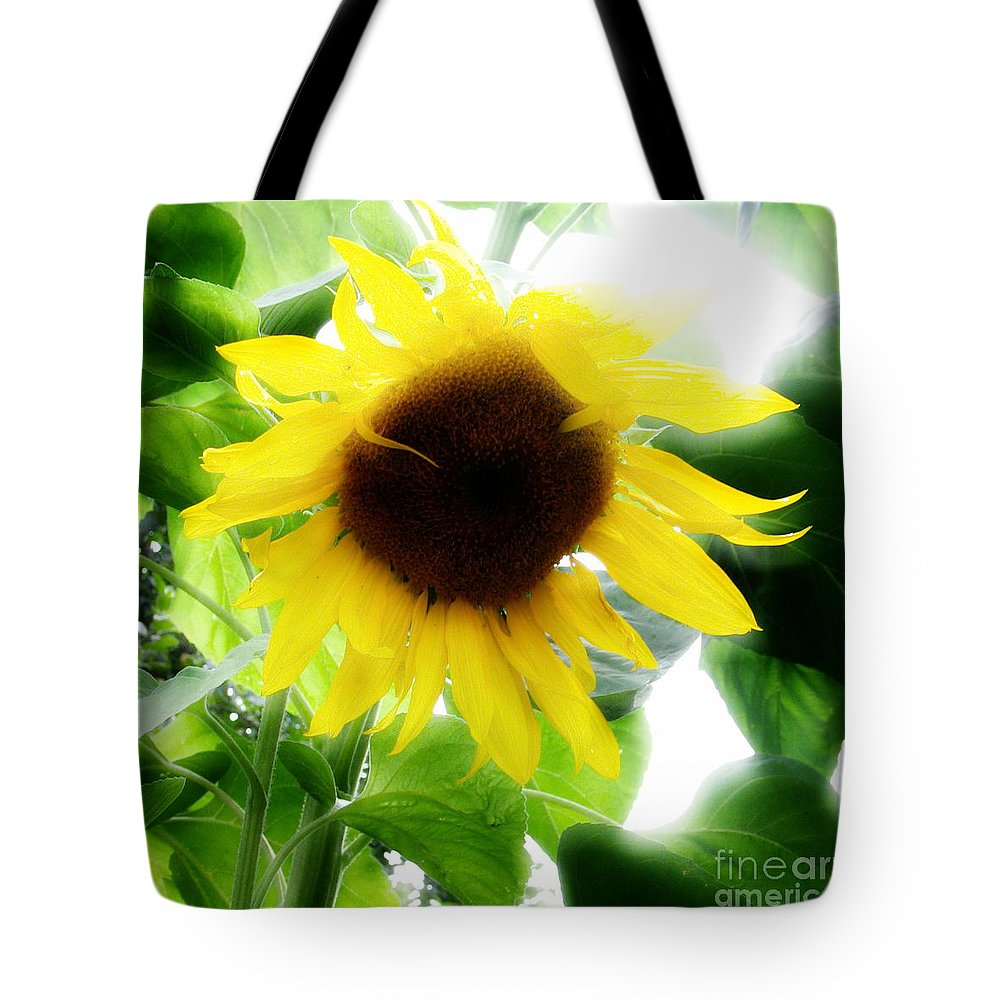 Sunflower Tote Bag featuring the photograph Golden Beauty by Idaho Scenic Images Linda Lantzy