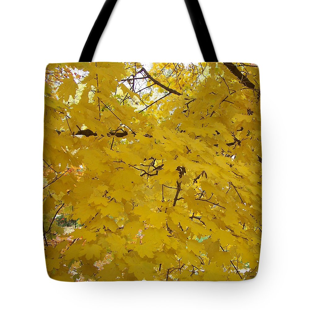 Fall Autum Trees Maple Yellow Tote Bag featuring the photograph Golden Canopy by Karin Dawn Kelshall- Best