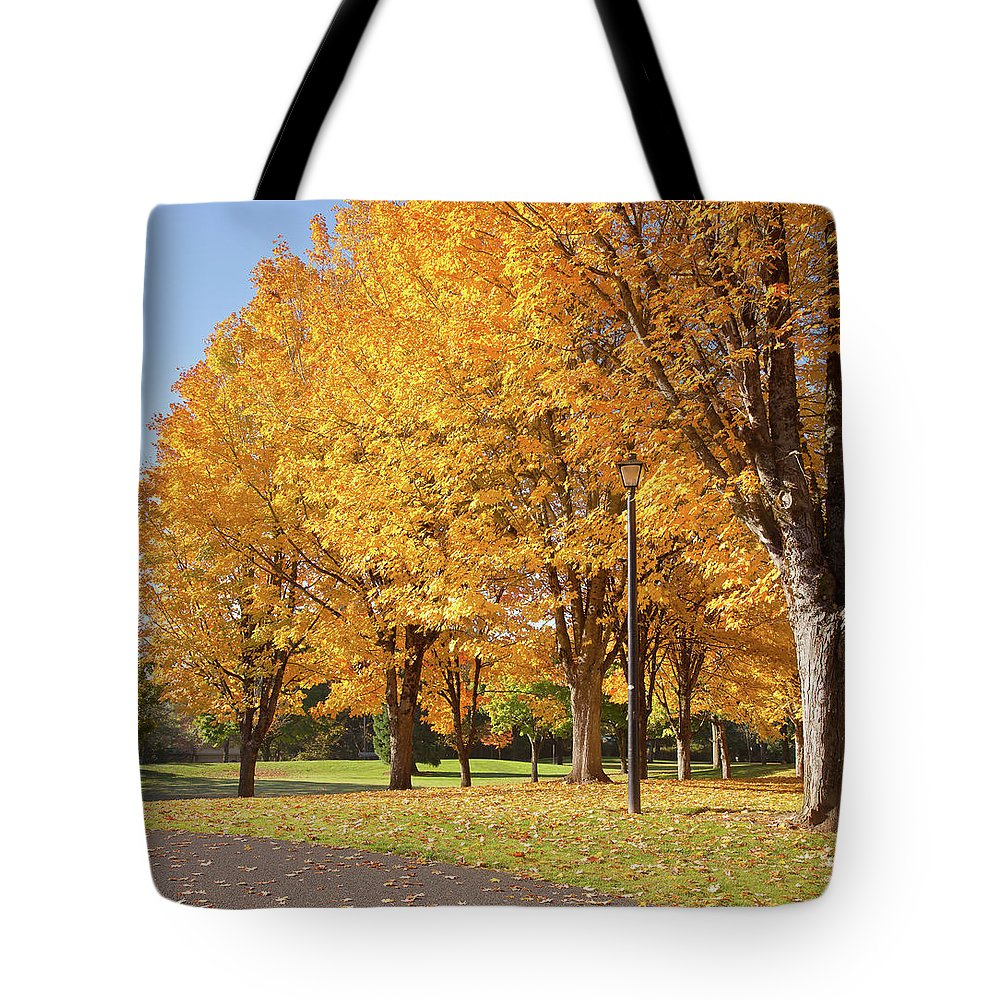 Yellow Tote Bag featuring the photograph Golden Colors In Autumn Bellavista Park Oregon. by Gino Rigucci