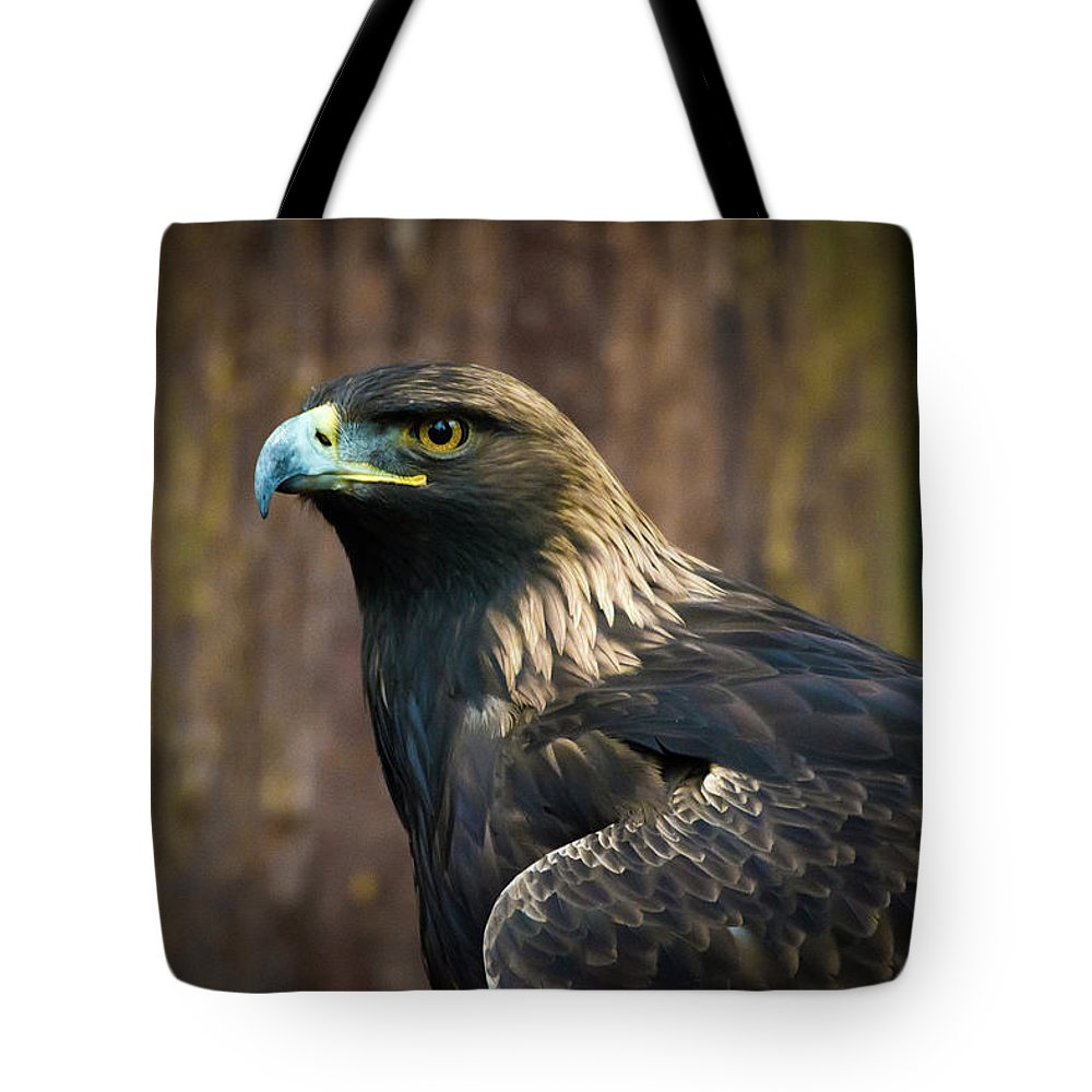 Eagle Tote Bag featuring the photograph Golden Eagle 5 by Jason Brooks