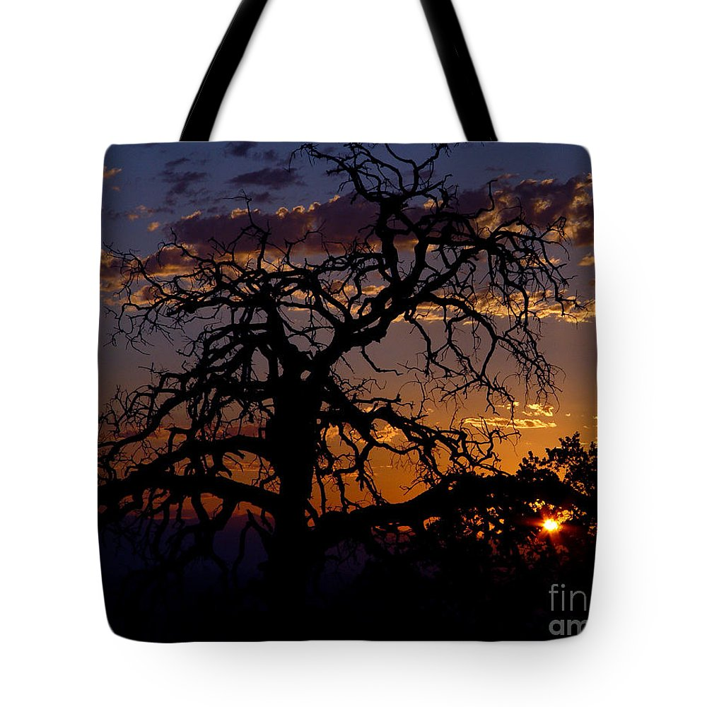 Sunset Tote Bag featuring the photograph Golden Hour by Peter Piatt