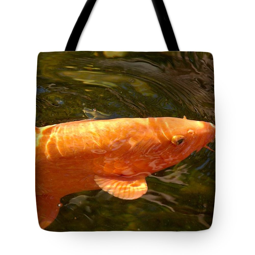 Loro Park Tote Bag featuring the photograph Golden One by Jouko Lehto