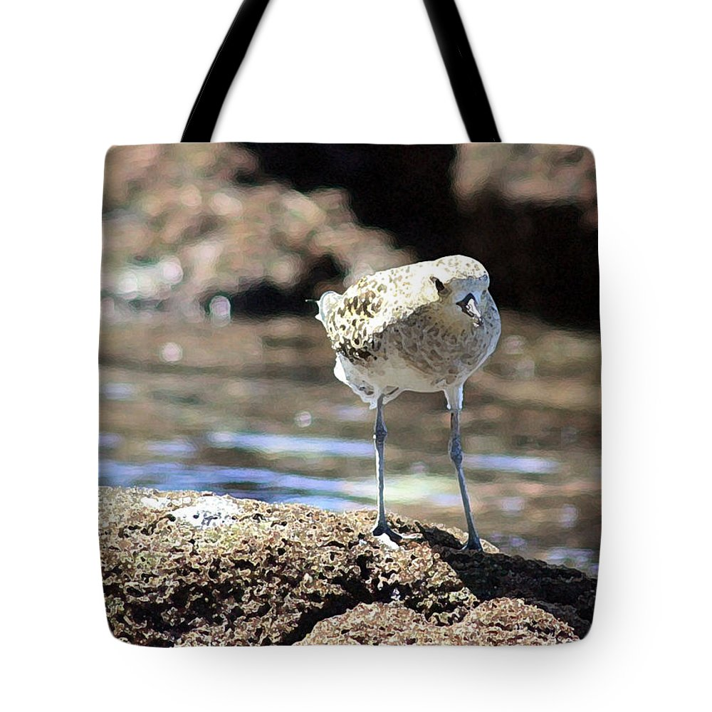 Plover Tote Bag featuring the photograph Golden Plover by Mary Haber