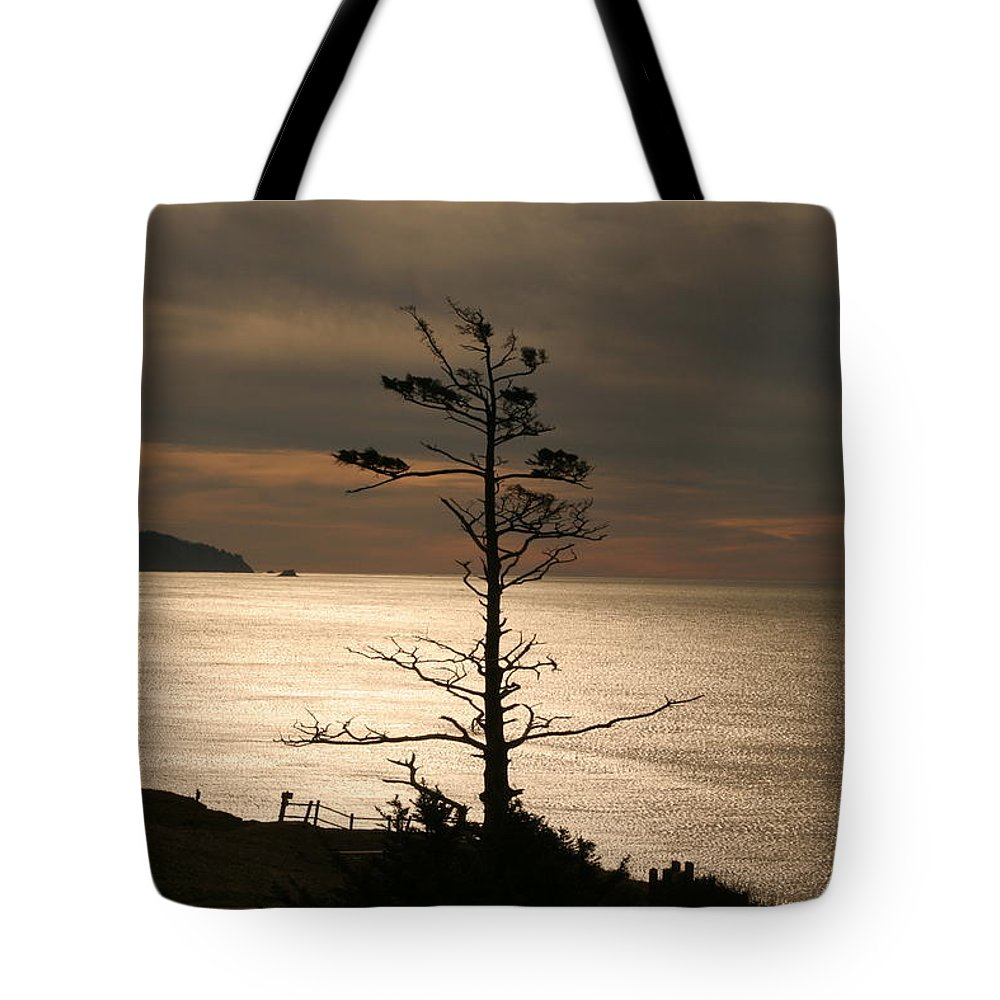 Golden Reflections Tote Bag featuring the photograph Golden Reflections by Wes and Dotty Weber