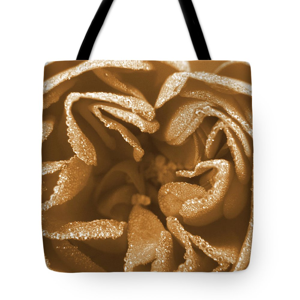 Rose Tote Bag featuring the photograph Golden Rose by Amy Fose