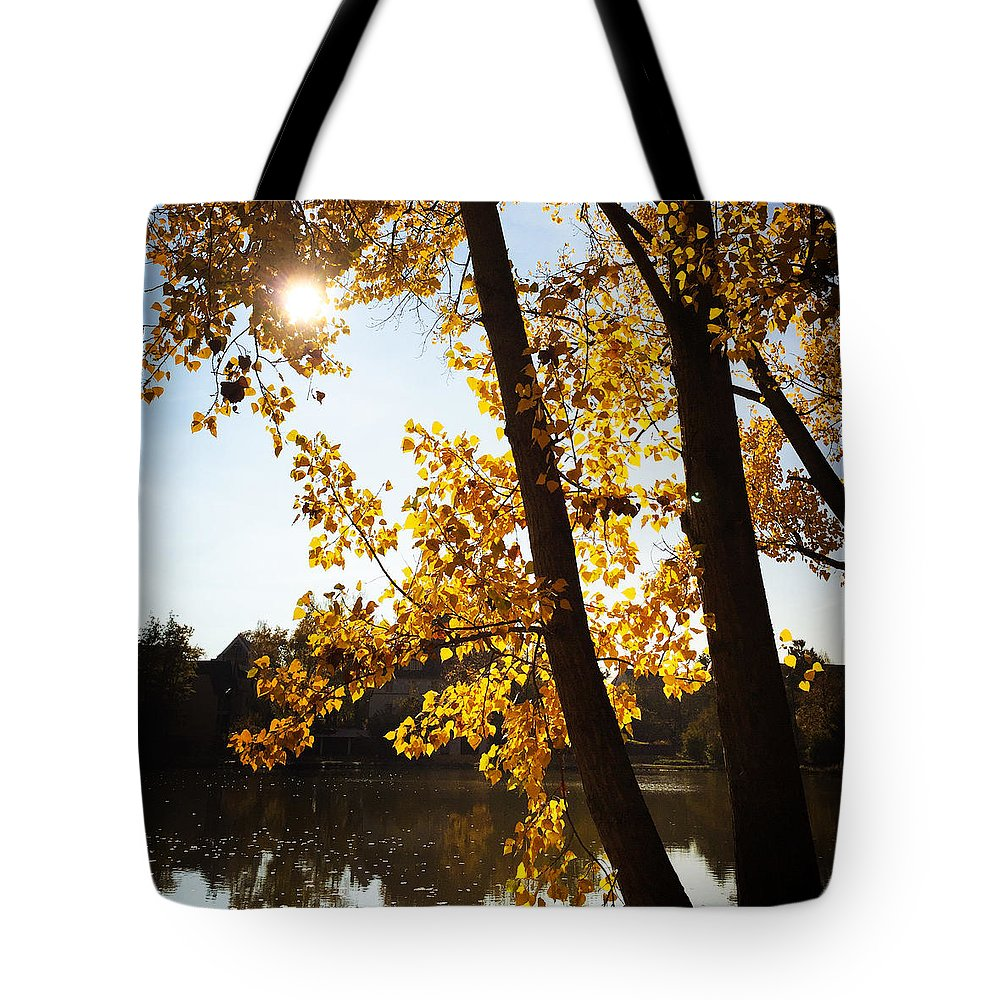 Sunlight Tote Bags